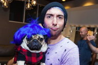 Here Are Some Photos Of All Time Low Meeting Doug The Pug