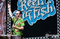 Ready, Set, Saxophone! Reel Big Fish Ska All Over Sonisphere
