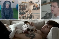 RANKED: The 11 Best Music Videos With Dogs In Them