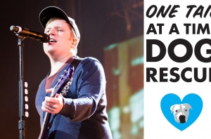 Fall Out Boy's Patrick Stump Is Set To Headline A Fundraiser For A Chicago Animal Shelter