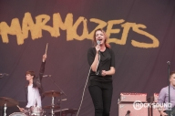 Marmozets Are Teasing Something