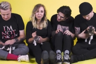 Watch Milk Teeth Play With All Of The Kittens In Their New Video