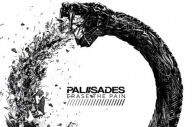 Here's Everything You Need To Know About The New Palisades Album