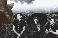 Candy Hearts Found A Cat On Warped Tour And Named Her PVRIS