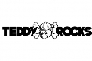 Teddy Rocks Festival Have Announced Their Full Line-Up